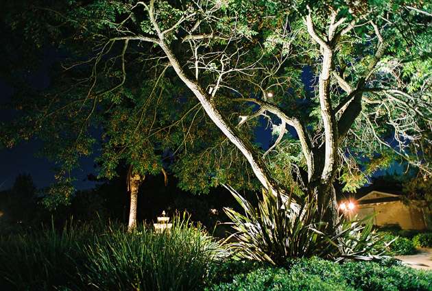 Low voltage outdoor lighting san diego ca you may have to pay a couple hundred dollars for standard circuitry setup or much more for a more comprehensive landscape lighting design and setup mozeypictures Image collections
