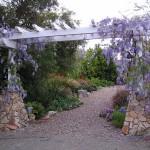 Bonita landscape design
