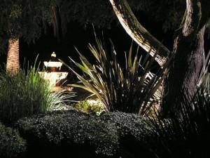 landscape-lighting-san-diegp