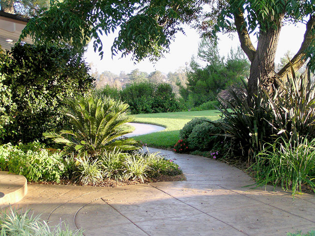 San Diego landscape mistakes