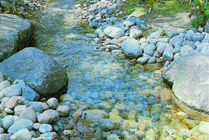 Rocks and Streambeds