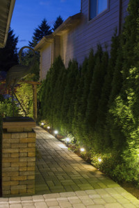 Normal Heights Landscape Lighting