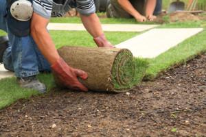 Lincoln Acres Landscape Contractor