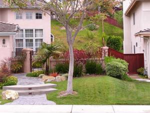 Front Yard San Diego CA