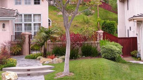 San Diego yard makevover