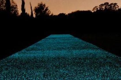 San Diego landscape pathways