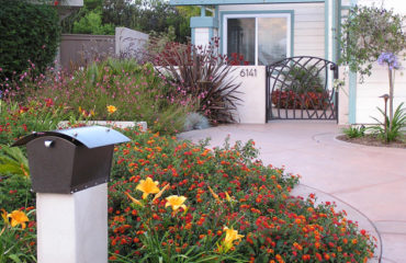 San Diego landscaping