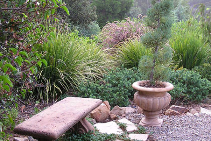 San Diego Landscape Design Tips