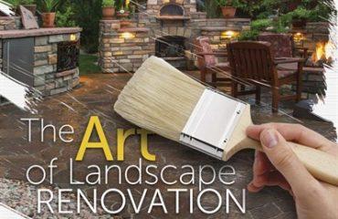 San Diego Landscape Renovation
