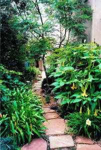 garden pathway San Diego
