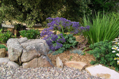 sustainable landscaping San Diego, CA