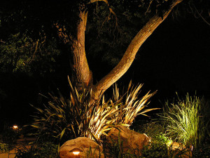 low voltage outdoor lighting San Diego CA