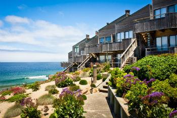 landscape design contractor San Diego CA
