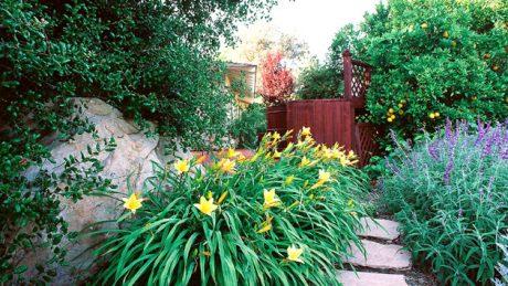 landscape design company San Diego CA