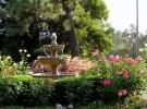 Gardens106
